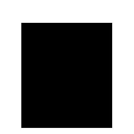 icon-dossier